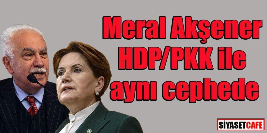 Perinçek: Meral Akşener HDP/PKK ile aynı cephede