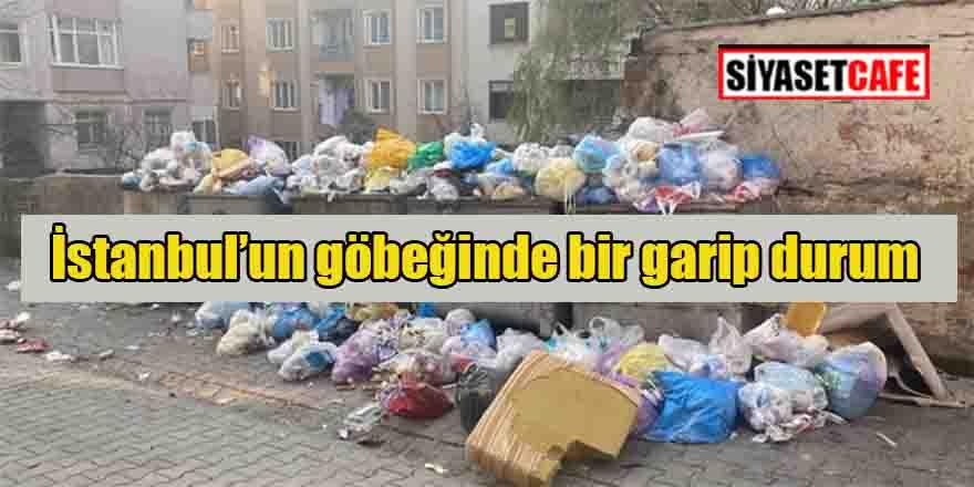İstanbul Maltepe Belediyesi işçilerinin direnişi sürüyor