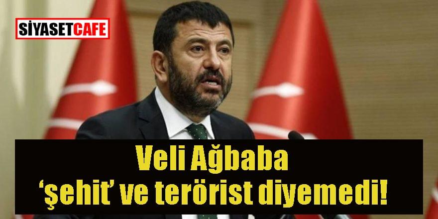 Veli Ağbaba 'terörist' 'şehit' diyemedi!