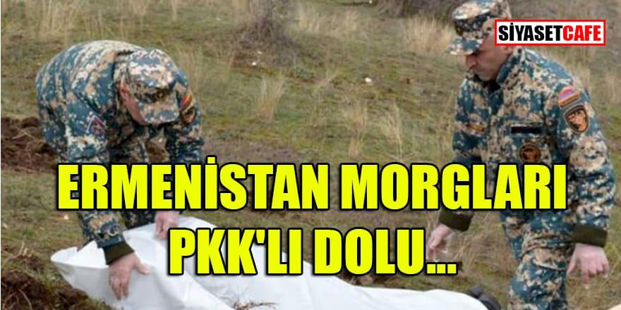 Ermenistan Morgları Pkk'lı dolu... Cesetleri ortada kaldı!