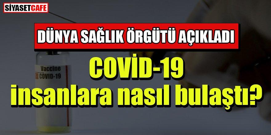 DSÖ açıkladı: COVİD-19 insanlara nasıl bulaştı?