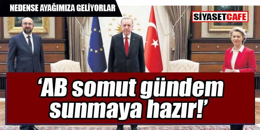 Türkiye nedense kıymete bindi... Ayağına geldiler