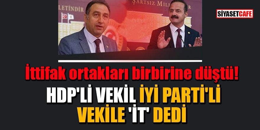 İttifak ortakları birbirine düştü! HDP'li vekil İYİ Parti'li vekile 'it' dedi