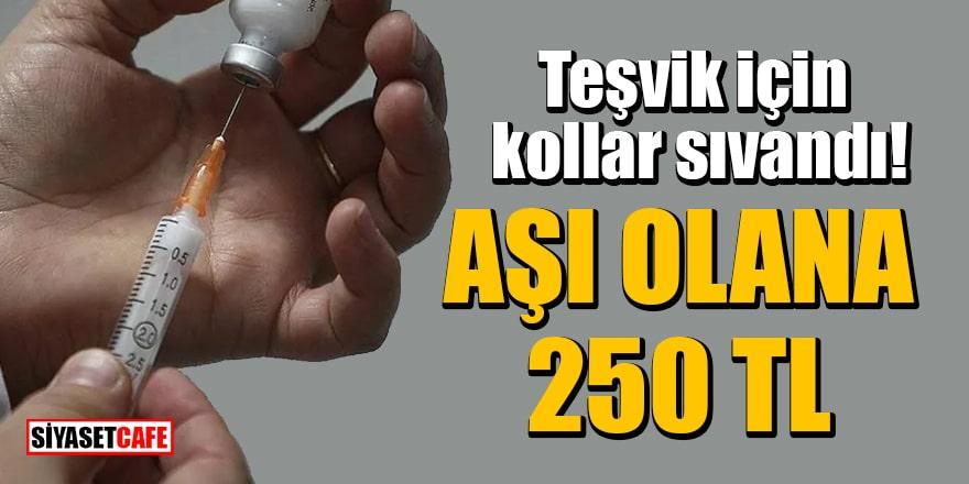 Teşvik için kollar sıvandı! 31 Mayıs'a kadar aşı olan herkese 250 TL verilecek