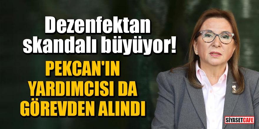 Erdoğan'dan kritik atama! Ruhsar Pekcan'ın yardımcısı da görevden alındı