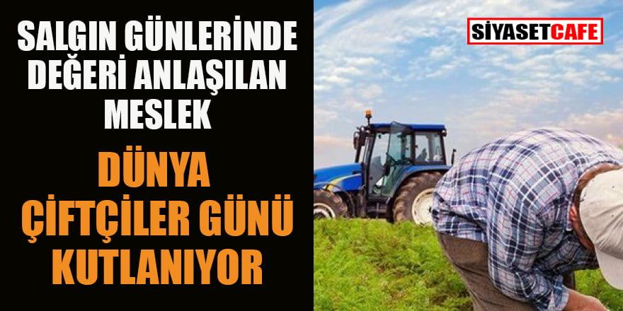 Dünya Çiftçiler Günü kutlanıyor