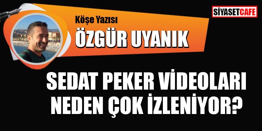 Özgür Uyanık yazdı: Sedat Peker videoları neden çok izleniyor?