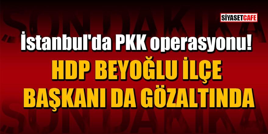 İstanbul'da PKK operasyonu! HDP Beyoğlu İlçe Başkanı da gözaltına alındı
