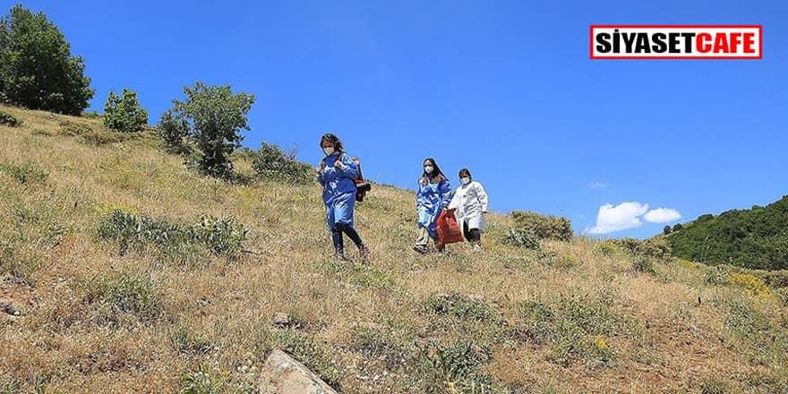 Sağlık ekipleri 1700 rakımdaki Kartal Yaylası'nda arıcıları aşıladı