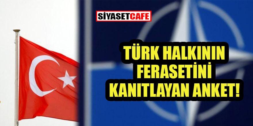 Türkler NATO'ya güveniyor mu? Anketten çıkan sonuç şaşırtmadı!