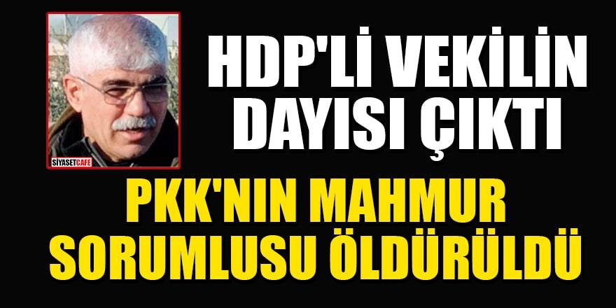 HDP'li vekilin dayısı, PKK'nın Mahmur sorumlusu Hasan Adır öldürüldü!