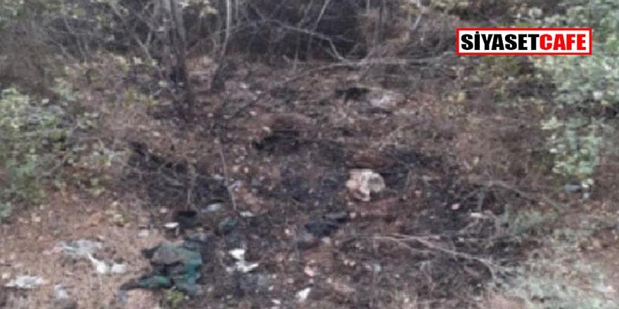Ormanı yakan PKK'lı tutuklandı