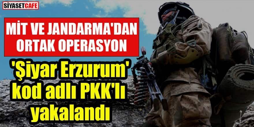 Ortak operasyon: 'Şiyar Erzurum' kod adlı PKK'lı yakalandı