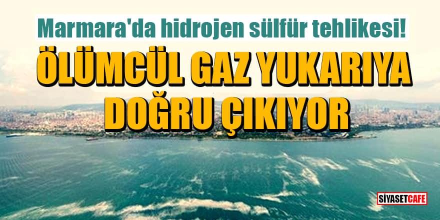 Marmara'da hidrojen sülfür tehlikesi! Ölümcül gaz yukarıya doğru çıkıyor