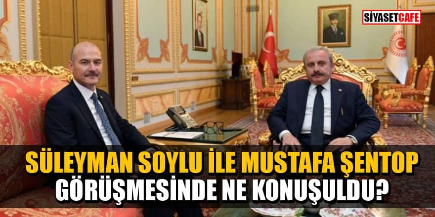 Süleyman Soylu ile Mustafa Şentop görüşmesinde ne konuşuldu?