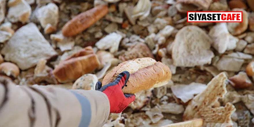 Türkiye İsraf Önleme Vakfı Başkanı'ndan 'ekmek israfı önleme planları' önerisi