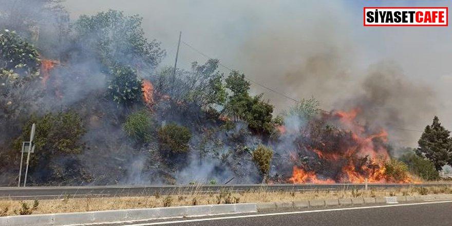 Muğla'da korkutan yangın: Karayolu kapatıldı