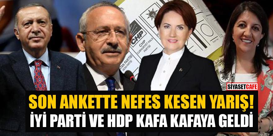 Son ankette nefes kesen yarış! İYİ Parti ve HDP kafa kafaya geldi