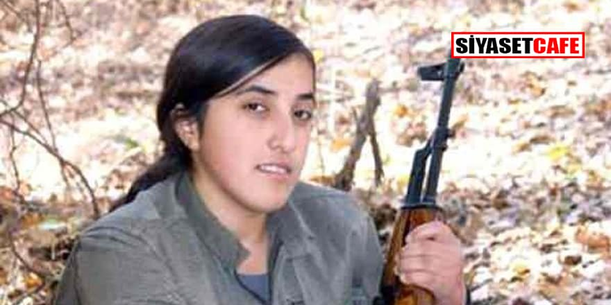 Öldürülen terörist HDP İlçe Başkanı çıktı!