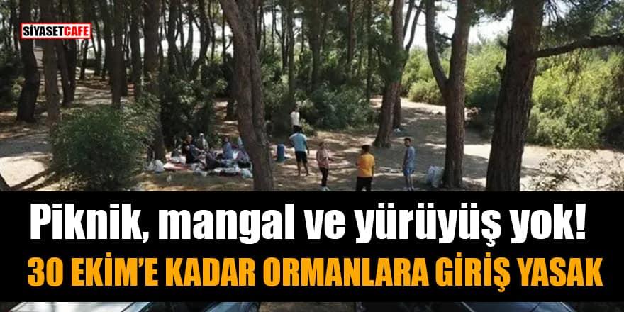 Piknik, mangal ve yürüyüş yok! 30 Ekim'e kadar ormanlara giriş yasak