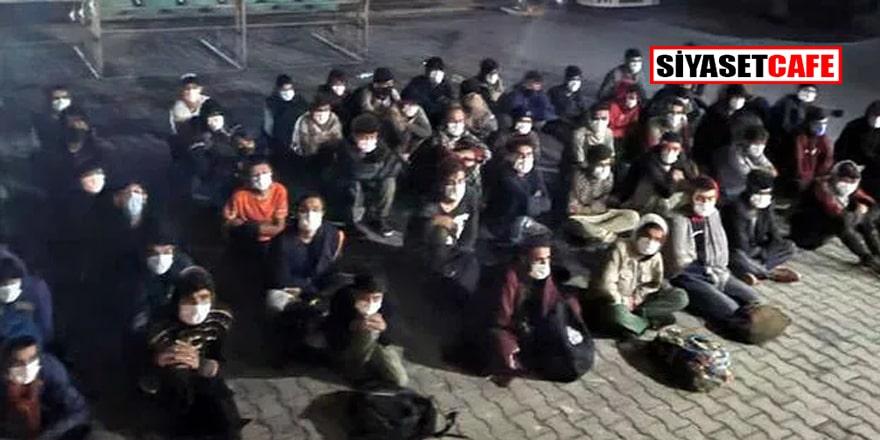 Akın akın geliyorlar! Erciş'te 60 düzensiz göçmen yakalandı