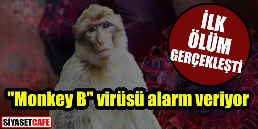 """""""Monkey B"""" virüsü alarm veriyor: İlk ölüm gerçekleşti"""