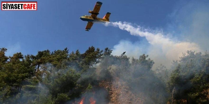 Osmaniye'de korkutan orman yangını