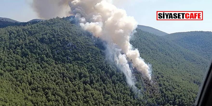 Muğla'da orman yangınıyla ilgili gözaltına alınan şüpheli tutuklandı