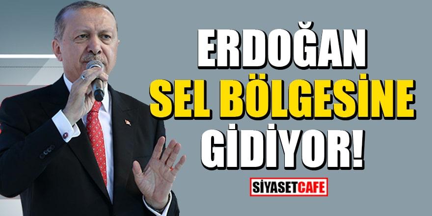 Cumhurbaşkanı Recep Tayyip Erdoğan sel bölgesine gidiyor!