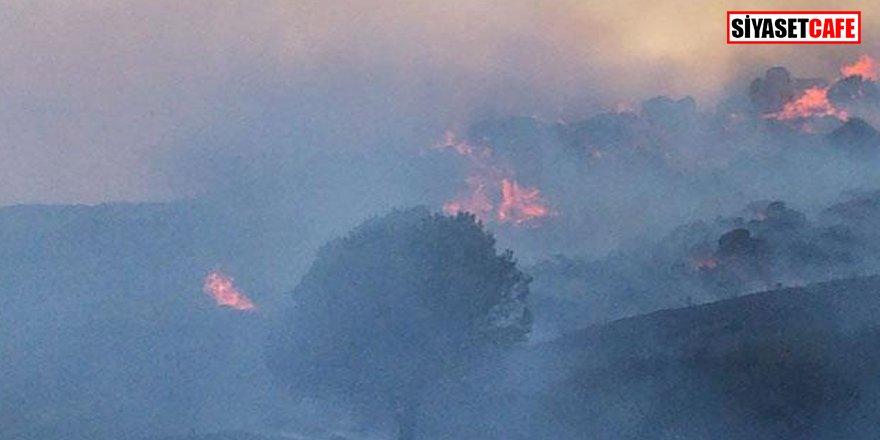 Avşa Adası'nda yangın: Havadan ve karadan müdahale