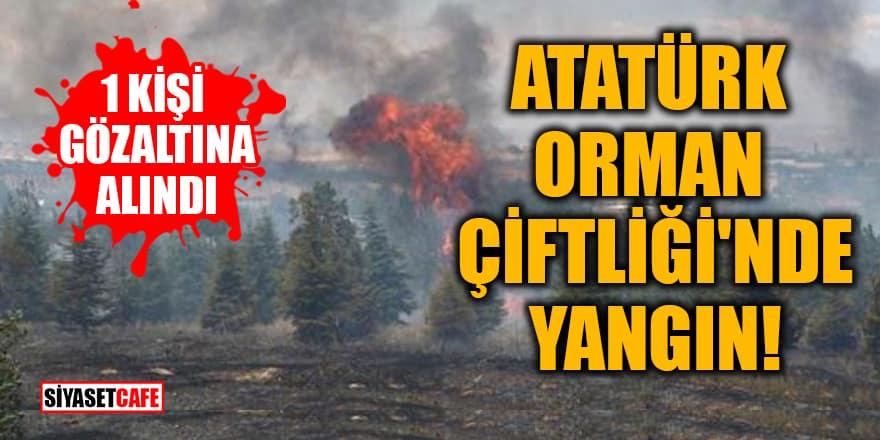 Atatürk Orman Çiftliği'nde yangın! 1 kişi gözaltına alındı