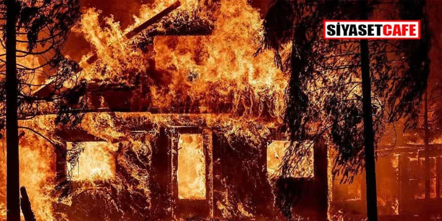 Kaliforniya'da orman yangınları söndürülemiyor! Acil durum ilan edildi
