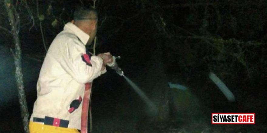 Samsun'daki orman yangını iddiaları asılsız çıktı
