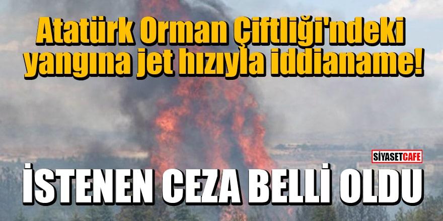 Atatürk Orman Çiftliği'ndeki yangına jet hızıyla iddianame: Şüpheli için istenen ceza belli oldu