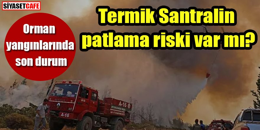 Orman yangınlarında son durum: Termik Santralin patlama riski var mı?