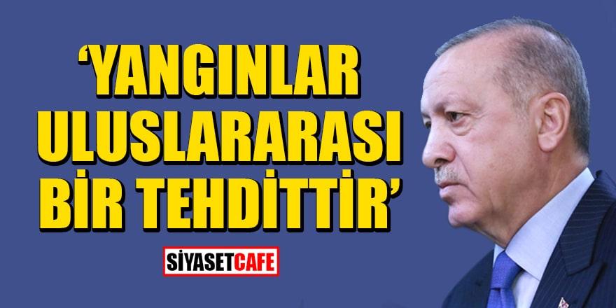 """Cumhurbaşkanı Erdoğan: """"Orman yangınları Kovid-19 salgını gibi uluslararası bir tehdittir"""""""