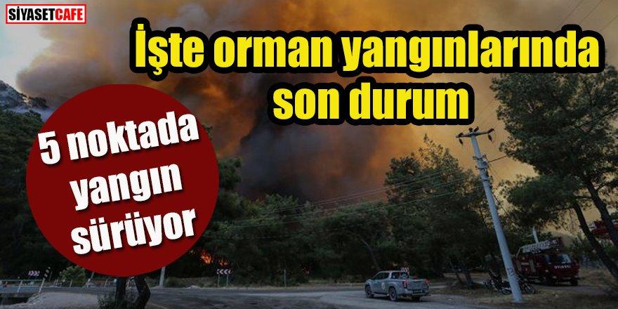 İşte orman yangınlarında son durum: 5 noktada yangın sürüyor