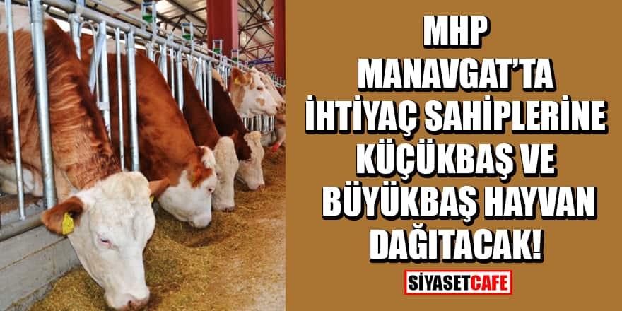 MHP, Manavgat'ta ihtiyaç sahiplerine küçükbaş ve büyükbaş hayvan dağıtacak
