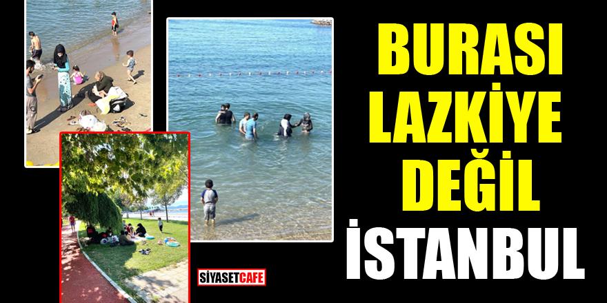 Fatih Altaylı sahillerde karşılaştığı manzara karşısında gözlerine inanamadı! 'Burası bizim İstanbulumuz mu?'