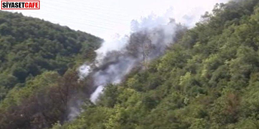 İstanbul'da ormanlık alanda korkutan yangın
