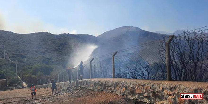 Bodrum'daki yangın tamamen kontrol altına alındı