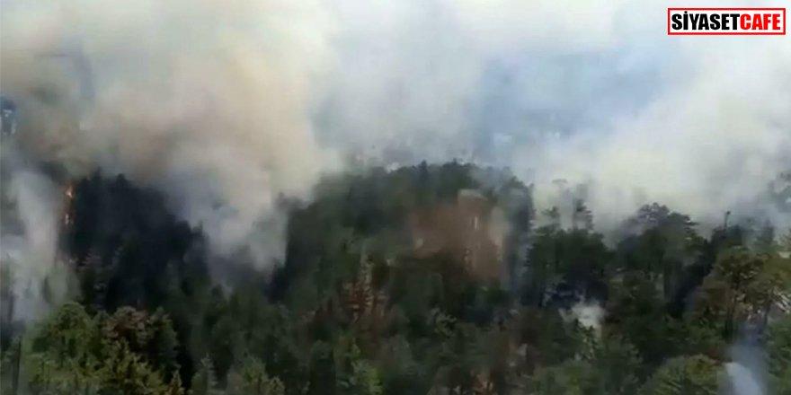 Antalya korkutan orman yangını başladı