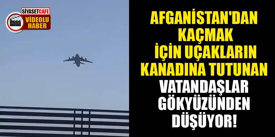 Afganistan'dan kaçmak için uçakların kanadına tutunan vatandaşlar gökyüzünden düşüyor!