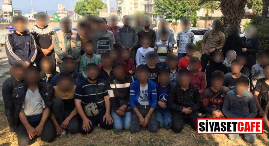 Kocaeli'nde 50 kaçak göçmen yakalandı