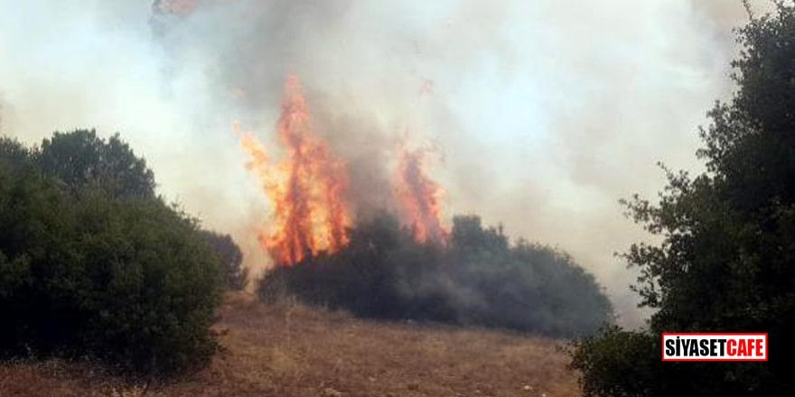Manisa Kula'da yangın! Hayvan çiftliği tahliye edildi