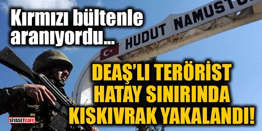Kırmızı bültenle aranan DEAŞ'lı terörist Hatay sınırında kıskıvrak yakalandı