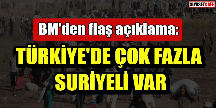 BM'den flaş açıklama: Türkiye'de çok fazla Suriyeli var