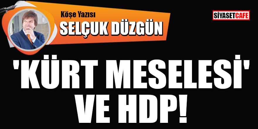 Selçuk Düzgün yazdı: 'Kürt meselesi' ve HDP