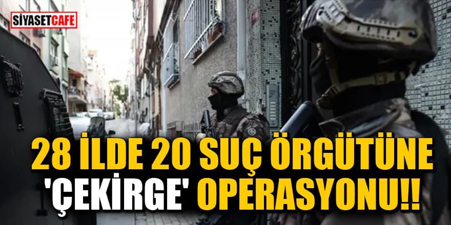 28 ilde 20 suç örgütüne 'Çekirge' operasyonu!