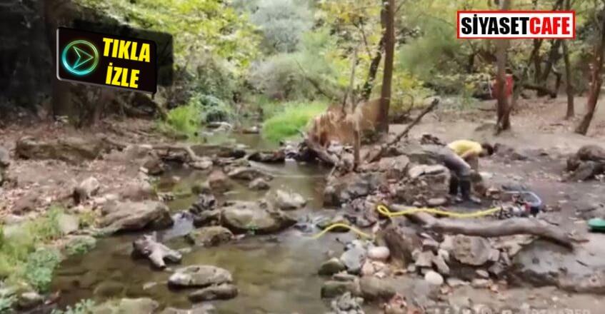 Altın avcısı Emre Aydın,6 yıldayarım kilo altın buldu